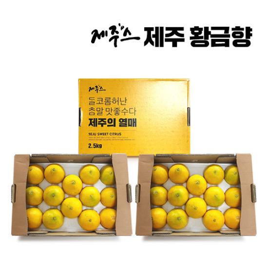 제주스 제주 햇 황금향 3박스(박스당 2kg 총 6kg)