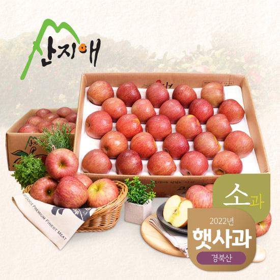 [산지애]알뜰 못난이 사과(소과)4.5kg 2box (46~54과)