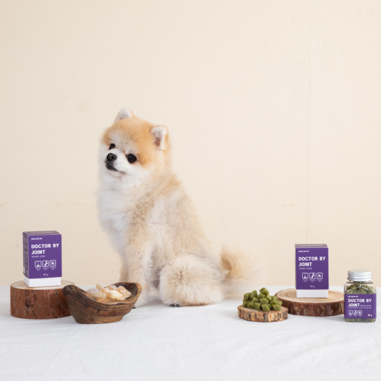 닥터바이 조인트(3개월) 강아지 고양이 관절영양제 특허소재