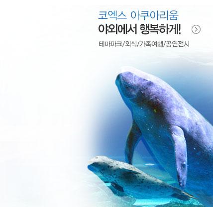 전국 테마파크/워터파크/공연/호텔뷔페